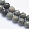 Natural Green Line Jasper Beads StrandsX-G-P361-01-8mm-3